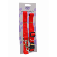 KINGFISHER LEAD AND COLLAR SET DOG